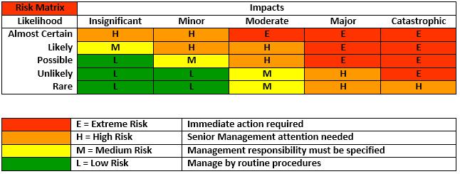 risks of strategic management pdf